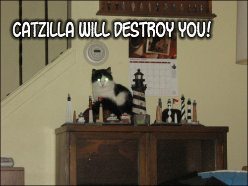 roflcats lol chat lolcats catz photo chats insolite catzilla