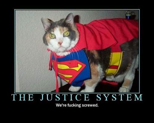 roflcats lol chat lolcats catz photo chats insolite superman supercat