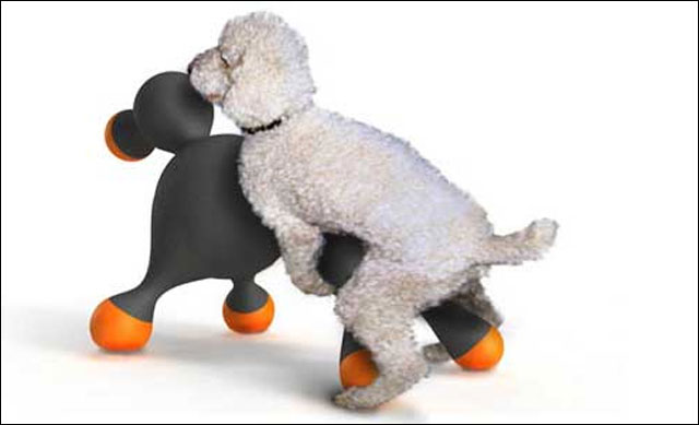sex toy pour chien sextoy caniche real hot doll