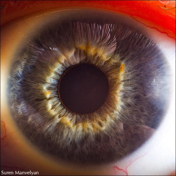 oeil macro photo haute resolution definition