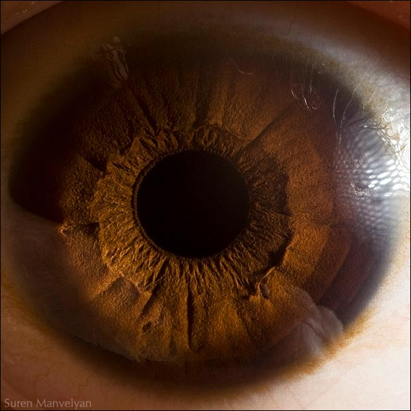 yeux oeil macro photo hd haute resolution definition