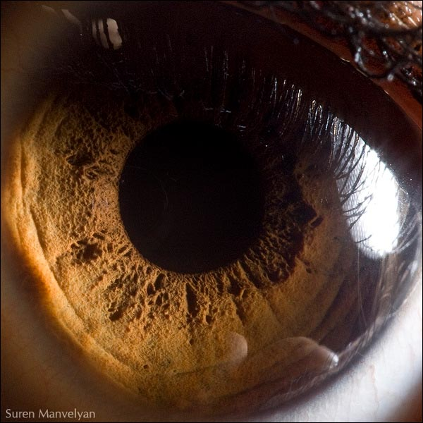 photographie yeux oeil macro photo hd haute definition picture