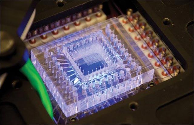 best of 2011 photo science nanotechnologie puce ordinateur