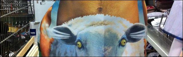 photo tablier cuisine encule mouton cadeau drole enterrement vie garcon