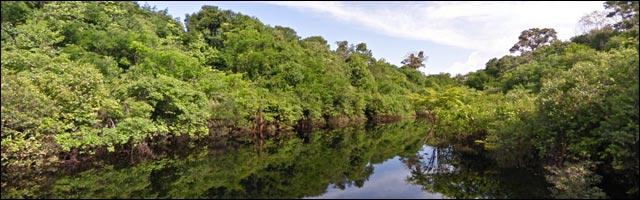 Google Maps StreetVew fleuve Amazone GoogleBoat voyage visiter Bresil pas cher