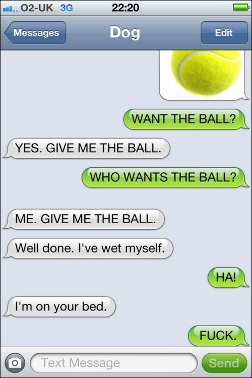 conversation SMS iPhone avec chien yes this is dog text from dog