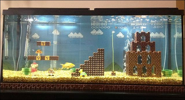 photo video aquarium Lego Super Mario Bros Nintendo