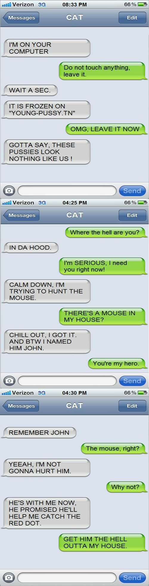 conversation SMS iPhone avec son chat texto text from cat