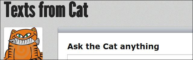 echange de SMS avec son chat