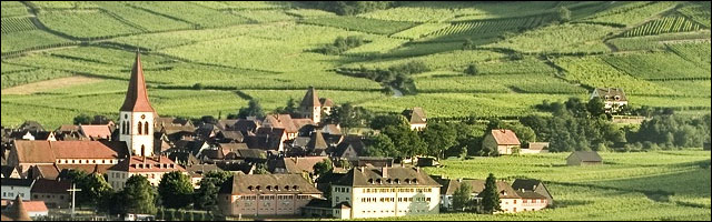 photo vignoble alsacien vigne Alsace village vin blanc Haut Rhin Bas Rhin 67 68