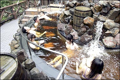 Japon insolite piscine spa cafe Bresil