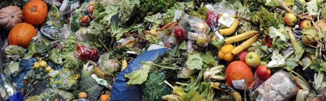 photo gaspillage alimentaire