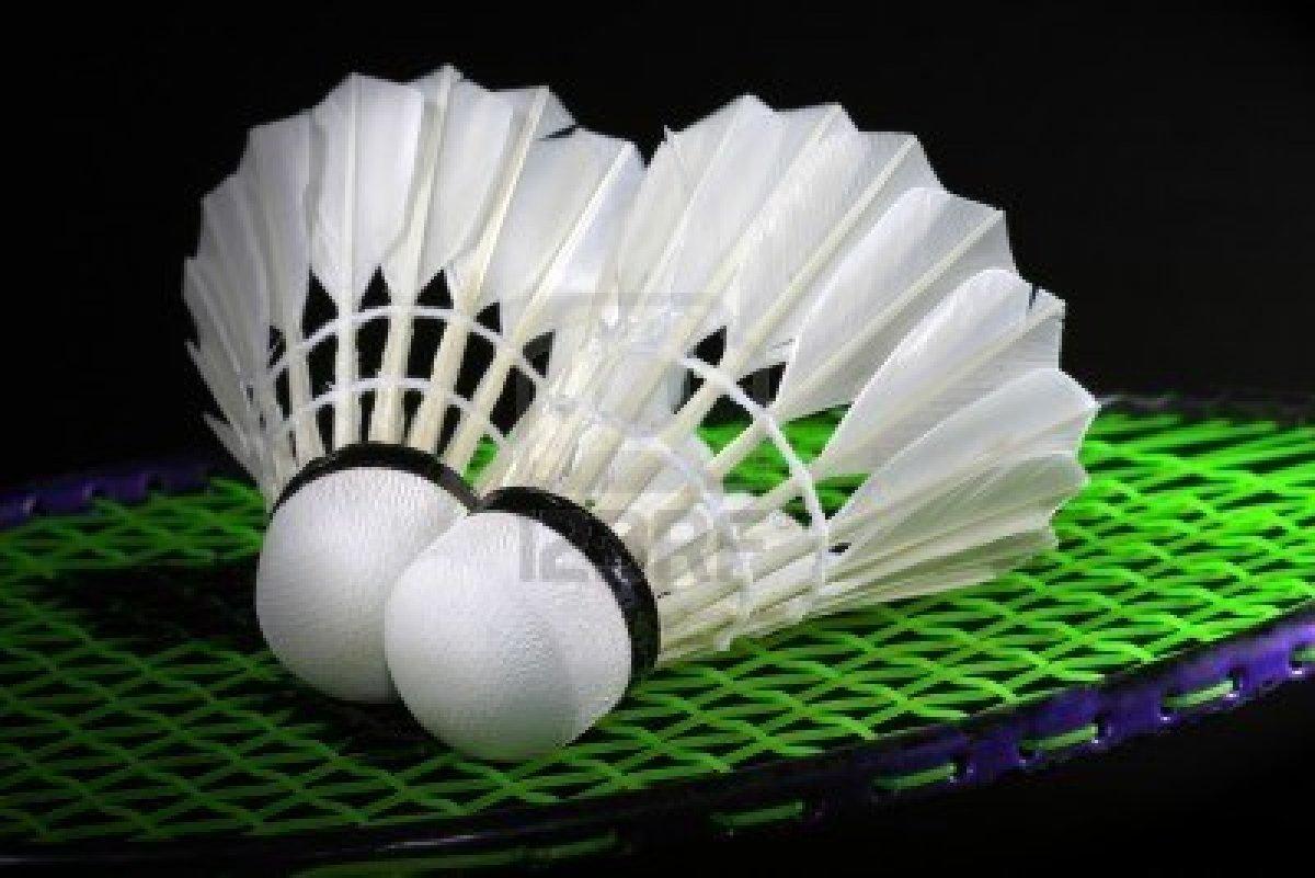 volant raquette badminton