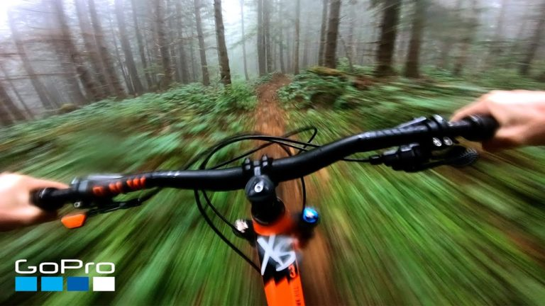 VTT dans une forêt embrumée