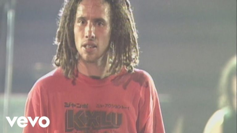Rage Against The Machine – Killing in the Name (live The Battle Of Mexico City)